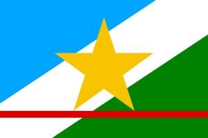 roraima - bandeira